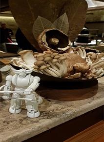 وايت روباتا مذاق الباربكيوالياباني
